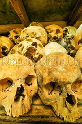 stock photo: skulls from the killing fields in cambodia this happened from around 1975 till 1979-Raw Stock Photo ID: 56874