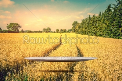 stock photo: stage hovering over a golden field-Raw Stock Photo ID: 68054