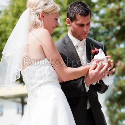 stock photo: wedding couple with dove in hand-Raw Stock Photo ID: 50006