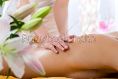 stock photo: wellness  woman getting body massage in spa-Raw Stock Photo ID: 52122