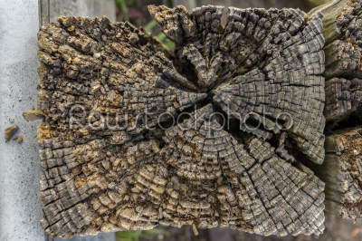 stock photo: wood post-Raw Stock Photo ID: 74999